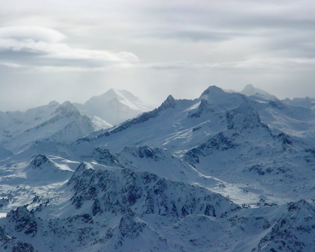 pin paysages montagne fond - photo #14